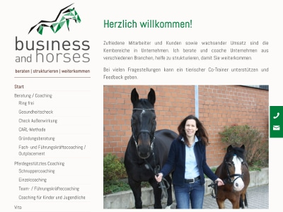 Business and Horses